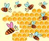 Beehive und Honeycomb