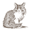 kleine Katze Zeichnung