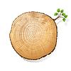 Baumstamm Abschnitt mit kleinen Zweig mit grünen