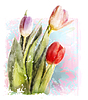 Векторный клипарт: Букет из тюльпанов. Акварель