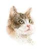 Векторный клипарт: старинные акварельный портрет кошки