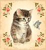 Векторный клипарт: Старинные карты с пушистым котенком и бабочкой.