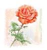 Imitation of Aquarell rote Rose