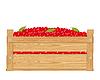 Box mit roten Beeren