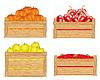 Fruits in Feld
