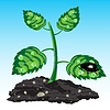 Векторный клипарт: Рассада растений
