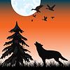 Der Wolf im Wald