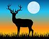 Silhouette der Hirsche auf Waldwiese