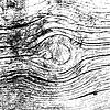 Holz Textur Hintergrund, Realistisch Planke.