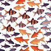 원활한 패턴 물고기 수족관 | Stock Vector Graphics