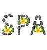Beschriftung Spa Hergestellt aus Kiesel und Frangipani-Blumen