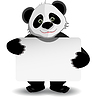 Panda mit weißem Hintergrund