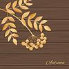 Векторный клипарт: с листьями и рябины