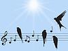 Векторный клипарт: музыка с птицами заметки