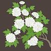 Векторный клипарт: Весна карта с белыми цветами