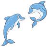 zwei Delphine