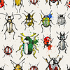 Nahtloses Muster mit Aquarell Käfer
