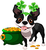 Boston Terrier feiert St. Patrick Day