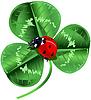 St. Patricks Day Drei Kleeblatt und Marienkäfer | Stock Vektrografik