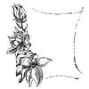 花卉背景花框 | 向量插图