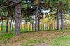 Jesień Krajobraz, Park jesienią | Stock Foto