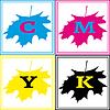 Векторный клипарт: Maple CMYK Логотип