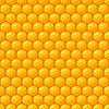Nahtloses Muster mit Bienenwaben und Honig