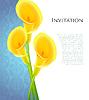 Векторный клипарт: Приглашение с Каллас цветов