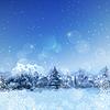 Векторный клипарт: Акварель Снежный лес