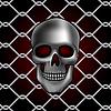 Векторный клипарт: череп забор