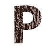 Buchstabe P aus Eichenrinde