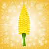 Frische Corn Cob