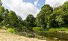 Sommer Wald und Fluss | Stock Photo