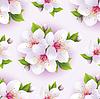 Schöne nahtlose Muster mit weißen Kirschblüte | Stock Vektrografik