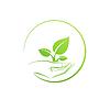 Hand hält Pflanze, Logo Wachstumskonzept