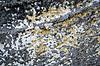부스럼 투성이의 석고 | Stock Foto