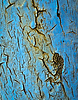 Blue paint scratched iron | Stock Foto