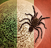 ID 4658042 | Background with Aztec calendar and tarantula | 높은 해상도 사진 | CLIPARTO