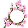 花框随着樱花 | 向量插图