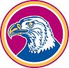 American Bald Eagle Kopfseite Kreis Retro