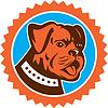 Bulldoggen-Hunde Mongrel-Kopf-Maskottchen Rosette