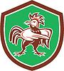 Huhn-Hahn Verärgerte Zeige Schild Retro