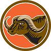 African Buffalo Leiter Side Kreis Retro