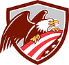 American Bald Eagle Greif USA-Flaggen-Schild Retro