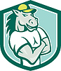 Pferde Arme verschränkt Schild Cartoon