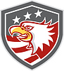American Bald Eagle Kopf Flaggen-Schild Retro