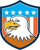American Bald Eagle Kopf Lächeln Flagge Cartoon