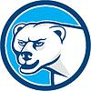 Eisbär Leiter Kreis Cartoon