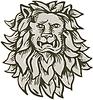 Wütend Lion Großkatze Leiter Radierung