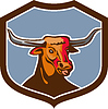 Texas Longhorn Red Bull Schild Retro